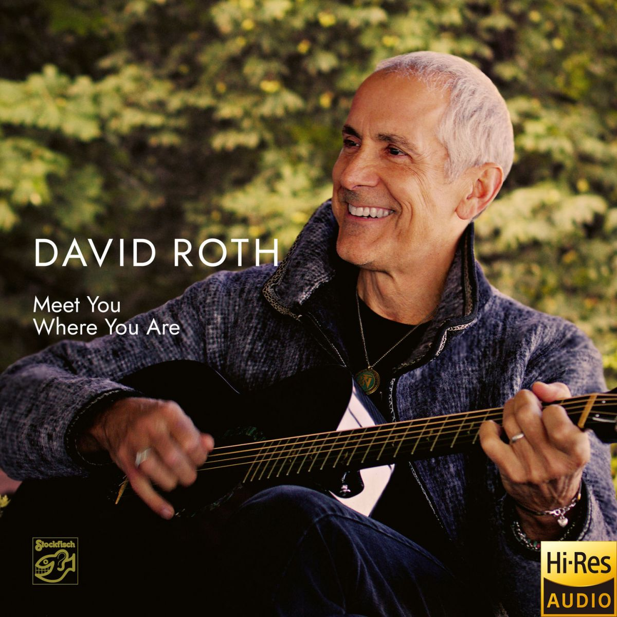 David Roth - Meet You Where You Are (24bit-88.2kHz)